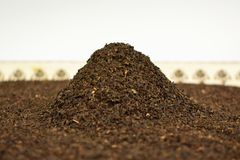 Uma corrediça do chá preto turco imagem de stock