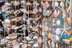 Uma cortina feita dos escudos do mar imagens de stock