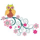 Uma coruja bonito que senta-se no ramo f floresce Imagens de Stock
