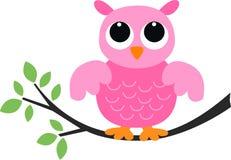 Uma coruja cor-de-rosa doce Imagem de Stock