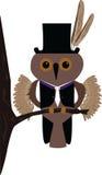 Uma coruja do vetor ilustração royalty free