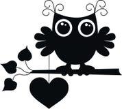 Uma coruja preta com um coração grande Fotografia de Stock Royalty Free