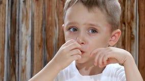 Uma criança come microplaquetas de batata com prazer ao sentar-se em uma tabela na perspectiva de uma parede de madeira Close-up vídeos de arquivo
