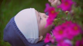 Uma criança que joga nas flores do jardim O rapaz pequeno joga com cores brilhantes em um jardim Os jogos da criança com tsyeta d filme