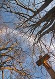 Uma cruz e árvores Imagem de Stock Royalty Free