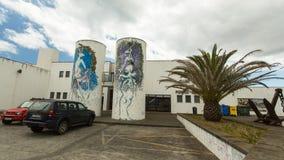Uma das ruas no centro de Ponta Delgada A cidade é ficada situada no Sao Miguel Island (232 99 km2) Foto de Stock Royalty Free