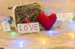 Uma declaração do amor Um presente para amantes Festão do Natal imagem de stock royalty free