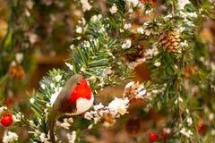 Uma decoração vermelha do Natal do pisco de peito vermelho fotografia de stock royalty free