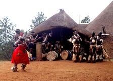 Uma demonstração tradicional do ritual da vila do tribo Zulu Fotografia de Stock