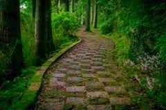 Uma entrada apedrejada do santuário de Hakone, na floresta em um dia ensolarado em Kyoto, Japão Foto de Stock