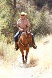 Uma equitação do vaqueiro em um prado com árvores levanta uma montanha Imagem de Stock Royalty Free