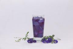 Uma ervilha em um vidro com gelo Quencher de refrescamento da sede fotos de stock royalty free