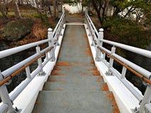 Uma escadaria à terra Imagens de Stock Royalty Free