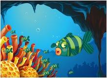 Uma escola de peixes listra-coloridos sob o mar Fotografia de Stock Royalty Free