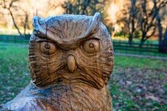Uma escultura de madeira da decoração da coruja no parque imagem de stock