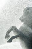 Uma escultura do cavalo na fonte Fotos de Stock