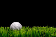 Uma esfera de golfe branca na grama verde Fotografia de Stock Royalty Free