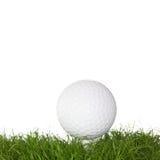Uma esfera de golfe na grama Imagem de Stock Royalty Free