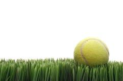 Uma esfera de tênis amarela na grama Foto de Stock