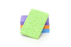 Uma esponja colorida Fotografia de Stock