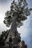 Uma estátua antiga do budismo Imagem de Stock Royalty Free