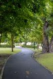 Uma estrada adiante Fotografia de Stock Royalty Free