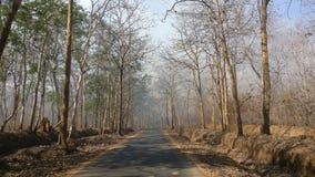 Uma estrada através da floresta de Dandeli foto de stock