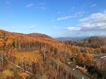 Uma estrada bonita no outono Foto de Stock Royalty Free