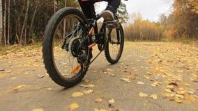 Uma estrada caucasiano da bicicleta dos passeios das crianças no parque do outono O ciclo alaranjado preto da equitação da menina video estoque