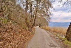 Uma estrada da maneira Imagem de Stock Royalty Free