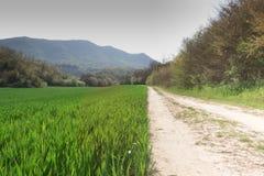 Uma estrada de terra Fotos de Stock
