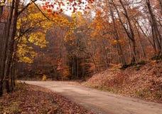 Uma estrada de terra do enrolamento na queda Fotografia de Stock Royalty Free