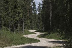 Uma estrada de terra torcida fotos de stock royalty free