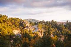 Uma estrada fina em uma floresta imagens de stock royalty free