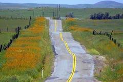 Uma estrada longa e instável imagens de stock