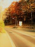 Uma estrada no outono Fotos de Stock