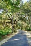 Uma estrada no parque da alface imagens de stock