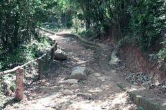 Uma estrada pitoresca, correndo através do terreno montanhoso na selva de Vietname foto de stock