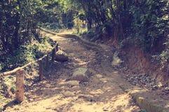 Uma estrada pitoresca, correndo através do terreno montanhoso na selva de Vietname Com tonificação fotografia de stock