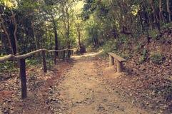 Uma estrada pitoresca, correndo através do terreno montanhoso na selva de Vietname Com tonificação imagens de stock royalty free