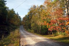 Uma estrada rural do cascalho através das árvores do outono fotos de stock royalty free