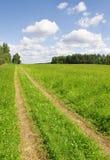 Uma estrada rural na grama verde do campo imagens de stock royalty free
