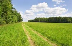 Uma estrada rural no campo fotos de stock royalty free