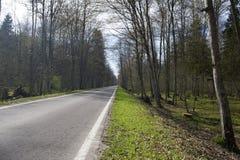 Uma estrada só imagens de stock