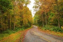 Uma estrada secundária imagens de stock royalty free