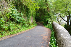 Uma estrada secundária estreita limitada limitada pela pedra Imagem de Stock
