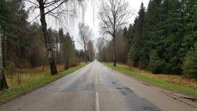 Uma estrada velha em Lituânia Imagem de Stock
