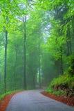 Uma estrada ventosa Fotografia de Stock