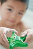 Uma estrela do mar do brinquedo imagem de stock royalty free
