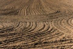 Uma estrutura interessante do sulco no campo chamuscado Fotografia de Stock Royalty Free